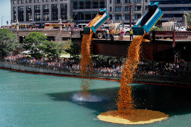Rubber ducks are dropped into the Chicago River to start the 14th Annual Ducky Derby, on August 8, 2018 in Chicago, Illinois. The charity event helps to raise money for Special Olympics Illinois. (Photo by Kamil Krzaczyński/AFP Photo)