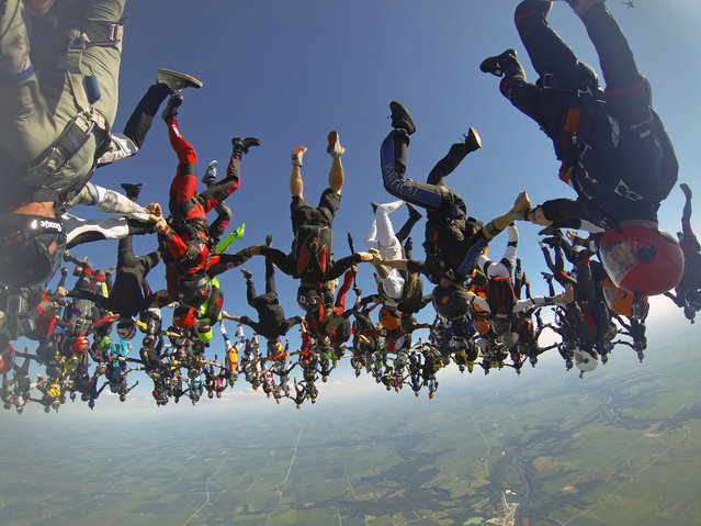 In this photo provided by Mickey Nuttall, members of an international team of skydivers join hands, flying head-down to build their world record skydiving formation, Friday, July 31, 2015, over Ottawa, Ill. (Photo by Jason Peters via AP Photo)