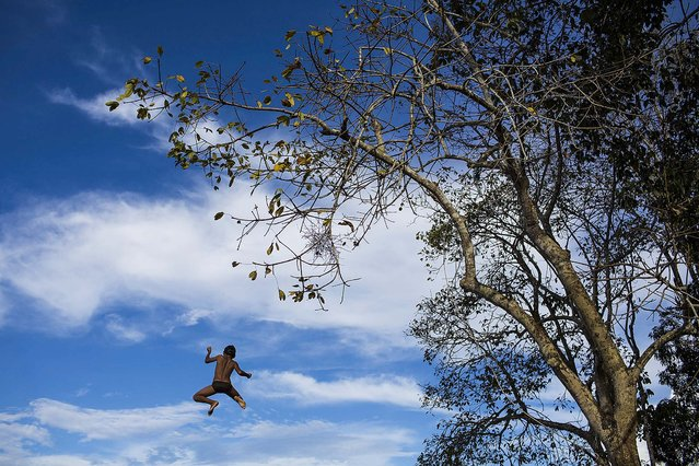 A boy jumps off a tree into the Rio Negro river in Sao Pedro, near Manaus, Brazil, on May 20, 2014. Manaus is one of the host cities for the 2014 World Cup in Brazil. (Photo by Felipe Dana/Associated Press)