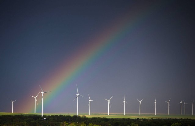A rainbow forms over a wind-energy farm near Latham, Kan., on Thursday, May 8, 2014. The rainbow came from the tail end of a line of thunderstorms that reached from Minnesota to the Kansas and Oklahoma border. (Photo by Travis Heying/AP Photo/The Wichita Eagle)