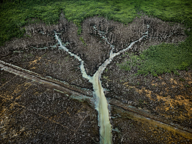 The Photo London Master of Photography award is given annually to a leading contemporary photographer. A special exhibition shows new and rarely seen images from Burtynsky's portfolio. Here: Oil Bunkering #2, Niger Delta, Nigeria, 2016. (Photo by Edward Burtynsky/Metivier Gallery, Toronto/Flowers Gallery, London)