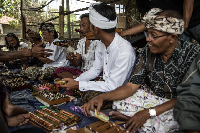 Balinese men community gather for traditional crickets fighting. (Photo by A. A. Gde Agung/JG Photo)