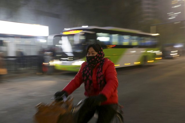 A woman wearing a mask rides a bicycle amid heavy smog in Beijing, China, November 28, 2015. Heavy smog continues in Beijing on Saturday after a yellow alert of air pollution was issued on Friday, local media reported. Beijing plans to ramp up its already tough car emission standards by 2017 in a bid by one of the world's most polluted cities to improve its often hazardous air quality. (Photo by Jason Lee/Reuters)