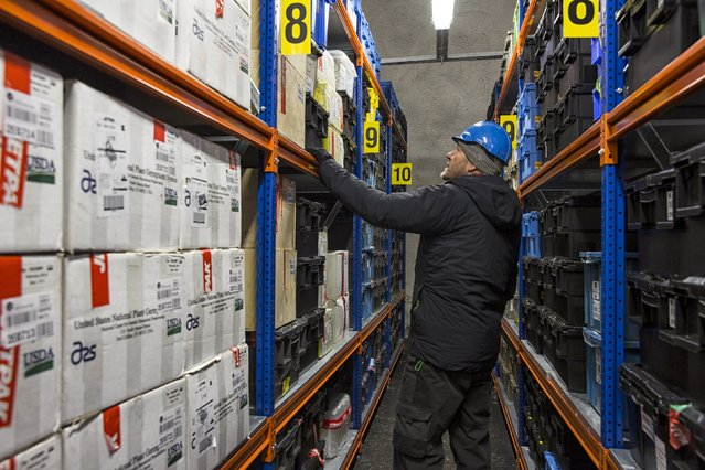 Asmund Asdal Senior Adviser from NordGen inspects seeds in storage at the international gene bank Svalbard Global Seed Vault (SGSV) near Longyearbyen on Spitsbergen, Norway, October 20, 2015. (Photo by Anna Filipova/Reuters)