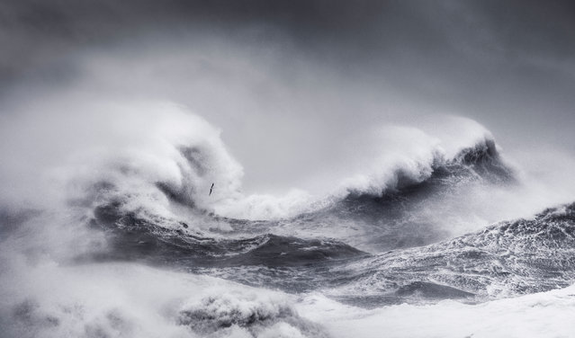 Shortlist, open competition, motion. Storm Ciara at Newhaven, East Sussex. (Photo by Dan Portch/Sony World Photography Awards)