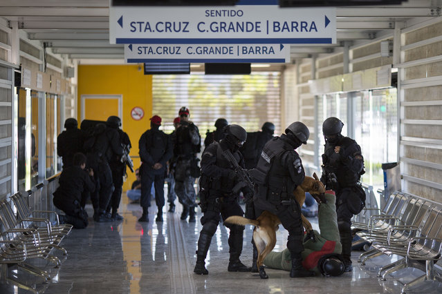 A police dog attacks a man playing the role of a criminal during a security drill in a BRT Transcarioca (Rapid Transit Bus) station in Rio de Janeiro, Brazil, Wednesday, February 11, 2015. (Photo by Felipe Dana/AP Photo)