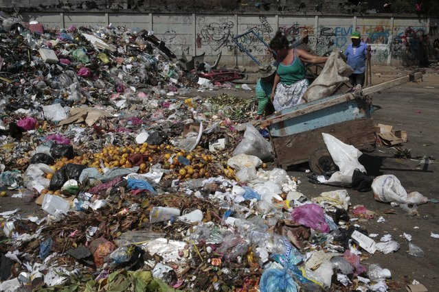 A woman dumps trash at the Oriental market in Managua, Nicaragua January 28, 2016. Nicaraguan government spokeswoman Rosario Murillo announced on Thursday of a new positive case of Zika in Managua city, bringing confirmed cases in the country to three. (Photo by Oswaldo Rivas/Reuters)