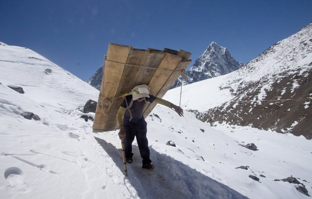 In this Sunday, March 22, 2015 photo, a porter carries wooden planks  to build a tea house in Lobuche, one of the last overnight stops with lodging on the way to the Everest base camp, Nepal. The three-month climbing season for Everest, the world's tallest mountain, begins in March. Last year, a sudden fall of ice struck a group of Sherpa guides hauling gear near base camp, killing 16 Sherpas in the worst single disaster on Everest. (Photo by Tashi Sherpa/AP Photo)