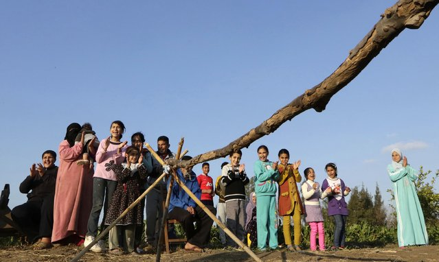 In this Friday, February 5, 2016 picture, children applaud Ahmed Ayman, 14, and his donkey after they jumped over a barrier in the Nile Delta village of Al-Arid about 150 kilometers north of Cairo, Egypt. A cousin has posted pictures of the feat online, which have been spread through social media. (Photo by Amr Nabil/AP Photo)