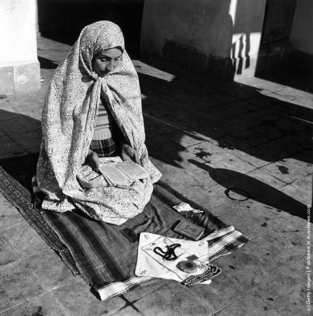 1955:  A woman reading from the Koran during her prayers which she makes five times a day