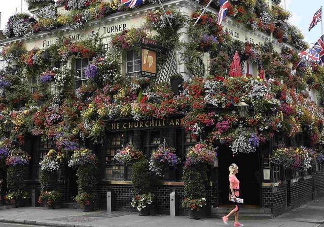 """A woman walks past The Churchill Arms public house in west London July 23, 2014. The 18th century public house has twice won the """"London in Bloom"""" competition for its floral displays and hanging baskets which adorn the outside. (Photo by Toby Melville/Reuters)"""