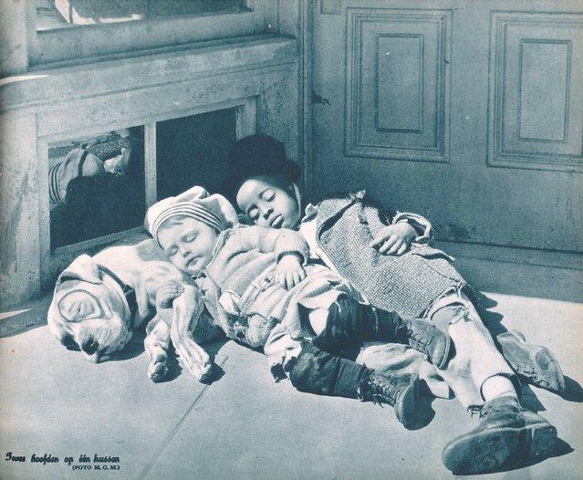 Sleeping children and dog, 1932