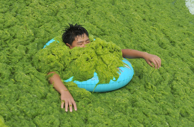 A man lies in the sea grass at a beach on July 18, 2016 in Qingdao, Shandong Province of China. The enteromorpha prolifera spread on the beaches in Qingdao and were under clearing. (Photo by VCG/VCG via Getty Images)