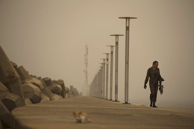 A diver walks near the shore of the Mediterranean Sea during a sandstorm in Ashkelon, Israel September 8, 2015. (Photo by Amir Cohen/Reuters)