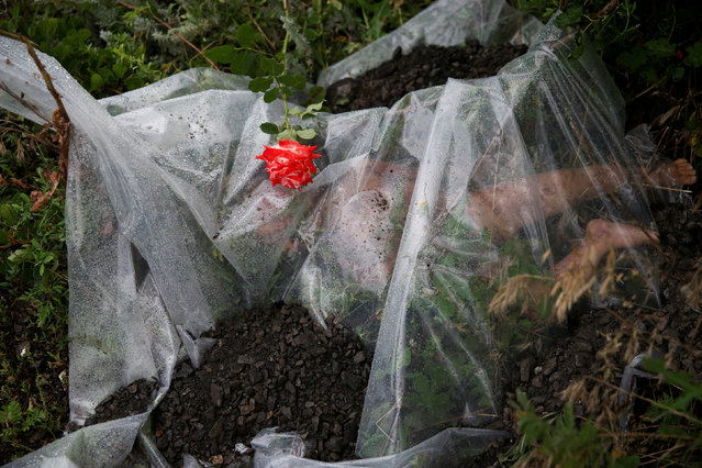 A rose lies on a plastic sheet covering a victim of a Malaysian Airlines Boeing 777 plane which was downed on Thursday near the village of Rozsypne, in the Donetsk region July 18, 2014. (Photo by Maxim Zmeyev/Reuters)