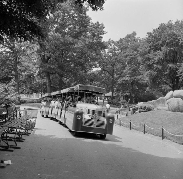 A trailer car driving zoo visitors around the grounds of Detroit Zoo, MIchigan, circa 1955. (Photo by Three Lions/Getty Images)