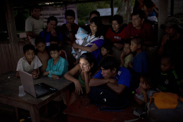 "In this November 19, 2015 photo, Ashaninkas indigenous watch the horror film series ""Wrong Turn"" on the laptop of health worker Jessica Ocampo, center, in Pichiquia, in Peru's Junin region. Government officials are visiting the village, which lacks electricity, to encourage good nutrition. (Photo by Rodrigo Abd/AP Photo)"