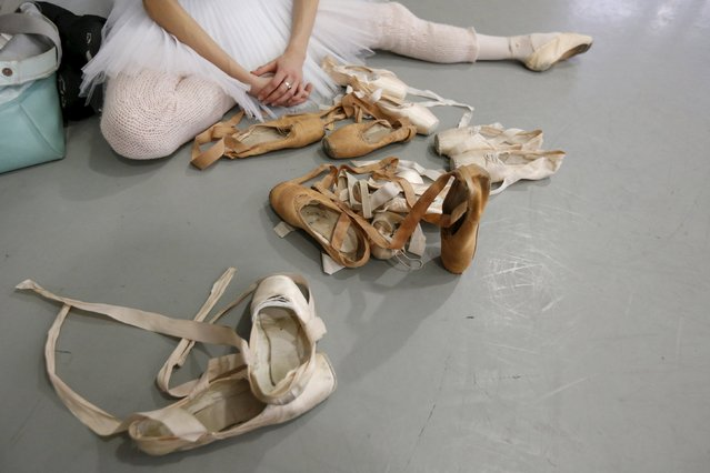 """Anastasia Soboleva, first soloist, chooses her pointe shoes for practice at Mikhailovsky Theatre in St. Petersburg, Russia November 20, 2015. For theatregoers in St Petersburg, Nacho Duato's """"The Nutcracker"""" demonstrates the global appeal of a Christmas classic. When the curtain rises at the Mikhailovsky Theatre, among the oldest opera and ballet houses in Russia, it's the culmination of hundreds of hours of toil and sweat by dancers, costume makers, set designers and musicians playing the famous score by Pyotr Tchaikovsky. (Photo by Grigory Dukor/Reuters)"""
