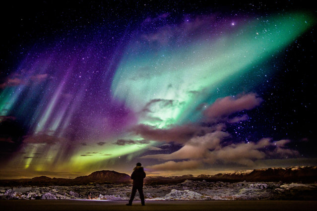 Person viewing the Northern lights over the lava landscape, Reykjanes Peninsula, Iceland. (Photo by Arctic-Images/Getty Images)