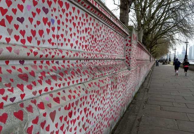 """People jog past the """"The National COVID Memorial Wall"""" on the south bank of the Thames in front of St. Thomas' hospital and opposite the House of Parliament in London, Sunday April 4, 2021. Hearts are being drawn onto the wall in memory of the many thousands of people who have died in the UK from coronavirus, with organizers hoping to reach their target of 150,000 hearts by the middle of next week. (Photo by Tony Hicks/AP Photo)"""