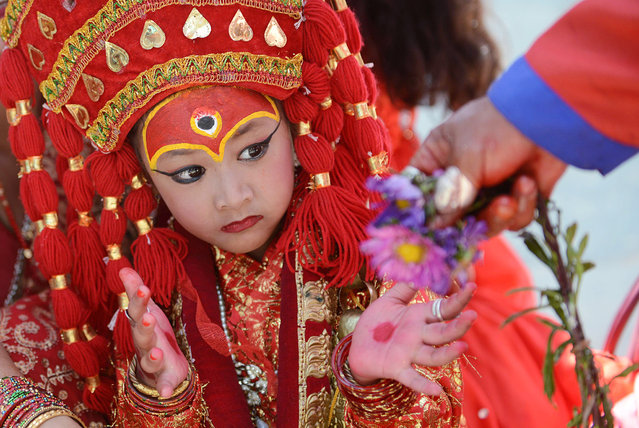 A young Nepalese girl dressed in the outfit of a Kumari, the living goddess, looks on as she takes part in Kumari Puja rituals at Hanuman Dhoka in Durbar Square of Kathmandu on September 17, 2013.   Some 504 girls under the age of nine from across the country have been brought to the temple for mass worship, protection from evil, and good luck in the future. Kumari, or Kumari Devi, is the tradition of worshiping young pre-pubescent girls as manifestations of the divine female energy or devi in Hindu religious traditions. (Photo by Prakash Mathema/AFP Photo)