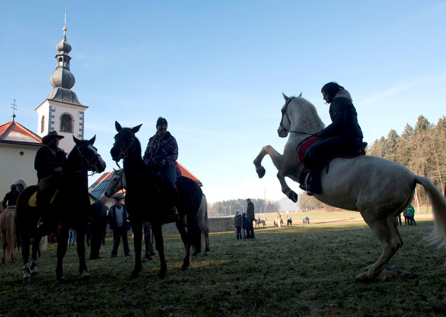 Riders wait for their horses to be blessed by a priest on St. Stephen's day in Srednja Vas, Slovenia December 26, 2016. (Photo by Srdjan Zivulovic/Reuters)