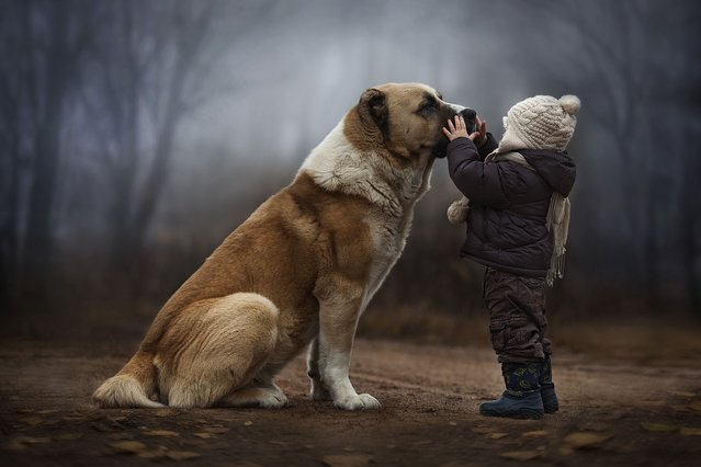 A mother captures the incredible bond between her son and their dog. (Photo by Elena Shumilova/Caters News)
