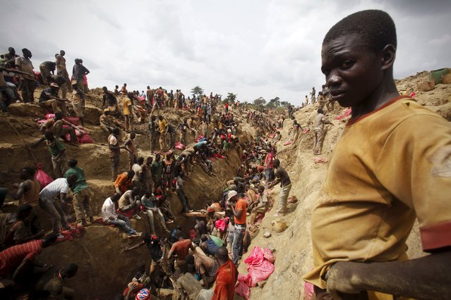 Prospectors search for gold at a gold mine near the village of Gamina, in western Ivory Coast, March 18, 2015. (Photo by Luc Gnago/Reuters)