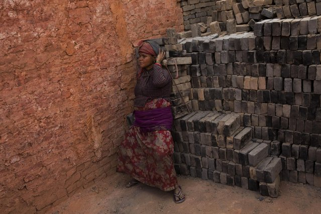 In this Wednesday, May 13, 2015 photo, a Nepalese laborer carries a load of bricks at a brick factory in Bhaktapur, Nepal. (Photo by Bernat Amangue/AP Photo)