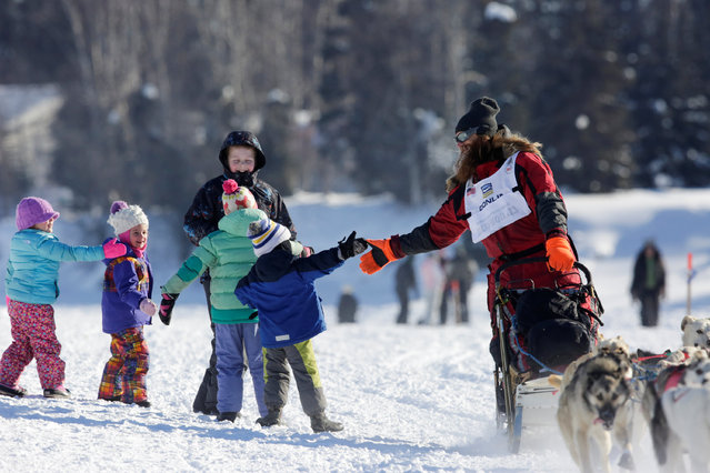 Trent Herbst competes in the official restart of the Iditarod, a nearly 1,000 mile (1,610 km) sled dog race across the Alaskan wilderness, in Fairbanks, Alaska, U.S. March 6, 2017. (Photo by Nathaniel Wilder/Reuters)