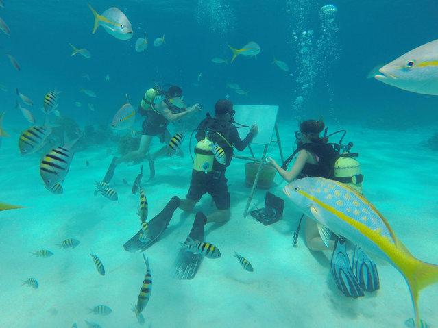 Fish swim as Cuban artist Sandor Gonzalez displays how he paints underwater for the media in Punta Perdiz, Cuba on June 14, 2019. (Photo by Rodrigo Gutierrez/Reuters)