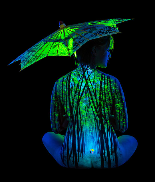 """Bamboo Mist"". (Photo by John Poppleton/Caters News)"