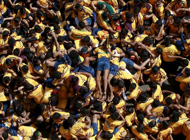 Devotees tumble as they try to form a human pyramid to break a clay pot containing curd during Janmashtami celebrations in Mumbai, India, September 6, 2015. (Photo by Danish Siddiqui/Reuters)