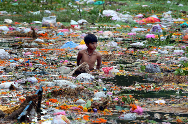 Young ragpickers collect clothes, coins, wooden materials and other usable items cluttered at the bank of the Jawahar Lal Nehru lake after the immersion of Lord Ganesh idols to mark the end of the Ganesh festival, in Bhopal, India, September 9, 2014. Despite of the warning of the district administration not to immerse idols in the lake to protect the environment, hundreds of idols have been immersed by devotees, resulting in a huge pollution of the lakes in India. (Photo by Sanheev Gupta/EPA)
