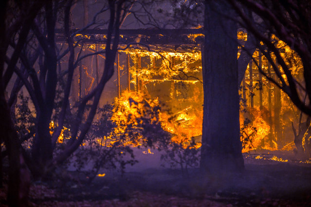 A home is engulfed in flames near the town of Glencoe, Calif., on Highway 26 on Friday, September 11, 2015. (Photo by Andrew Seng/The Sacramento Bee via AP Photo)