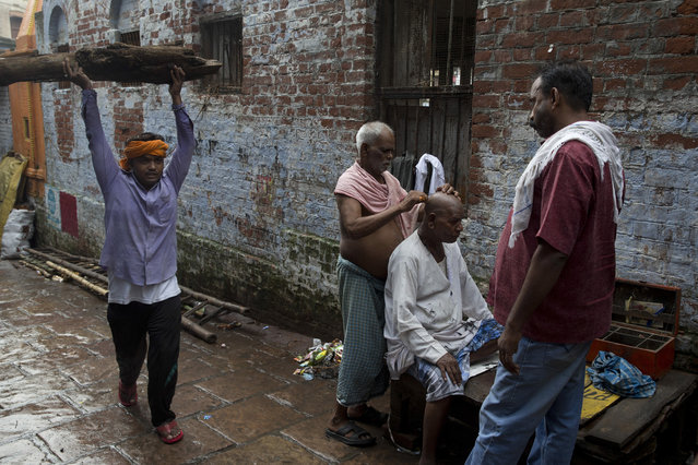 In this Friday, August 26, 2016 photo, a Hindu mourner has his head shaved after attending a funeral service in Varanasi, India. (Photo by Tsering Topgyal/AP Photo)