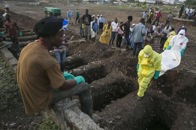 A grave digger watches as health workers carry the body of an Ebola victim for burial at a cemetery in Freetown, Sierra Leone, December 17, 2014. (Photo by Baz Ratner/Reuters)