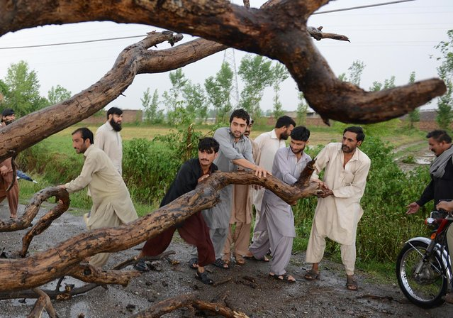 Pakistani residents remove a damaged tree from a street following heavy rain and winds in Peshawar on April 27, 2015. (Photo by A. Majeed/AFP Photo)
