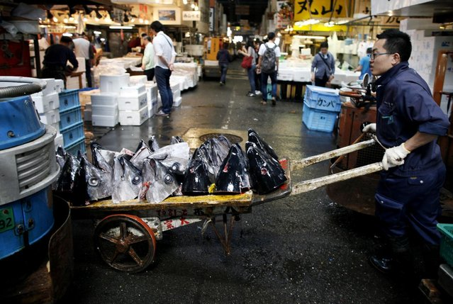 The heads of tuna on a cart are carried by a fish dealer after the day's auction at Tsukiji Wholesale Market in Tokyo Tuesday, April 28, 2015. (Photo by Shuji Kajiyama/AP Photo)