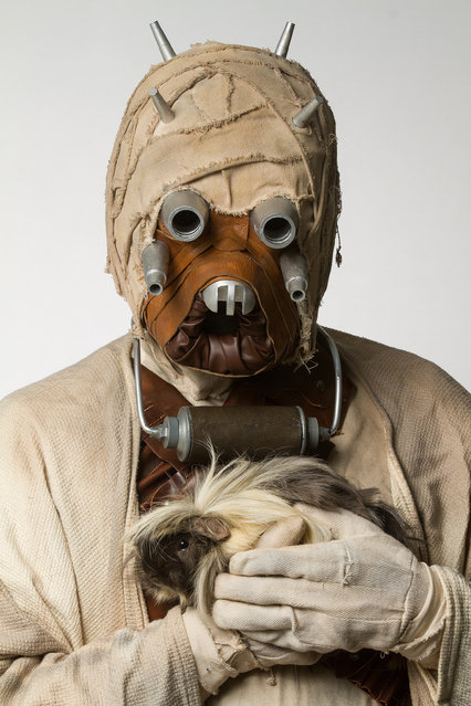 A Tusken Raider with a guinea pig. (Photo by Rohit Saxena/Caters News)