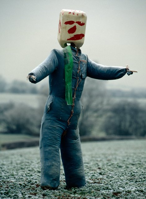 """One significant aspect of the evolution of scarecrows is the use of plastic containers, along with other modern materials such as masks and boiler suits. This one was pictured in Braybrooke, Market Harborough"". (Photo by Colin Garratt)"