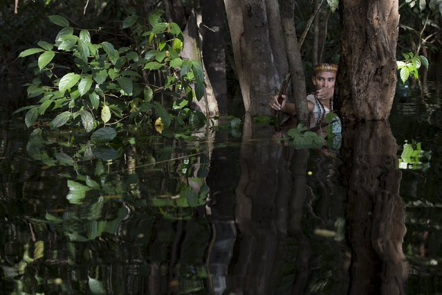 Kambeba Indian, Dream Braga, 18, aims his arrow in a jungle near the village Tres Unidos, Amazon state May 9, 2015. Dream Braga has been shooting fish with a bow and arrow for most of his life. In the Amazonian village where he grew up, that was what kids did for food and fun. (Photo by Bruno Kelly/Reuters)