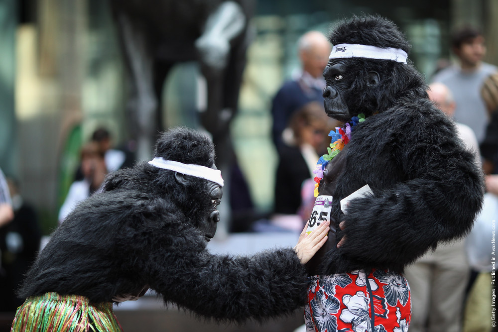 Gorillas Take To The Streets Of The City In Annual Charity Race