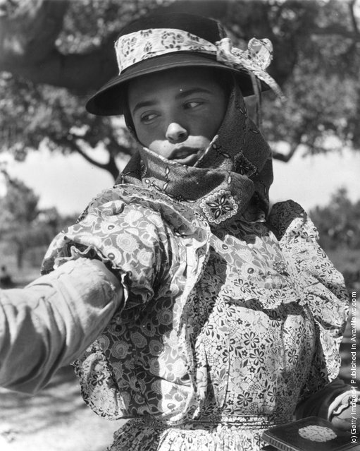 1955: Despite being best known for its wine and cork harvests, Portugal's rice fields have been a booming part of the country's economy since it was inherited from Arab Invaders; here a field worker in traditional Portuguese dress