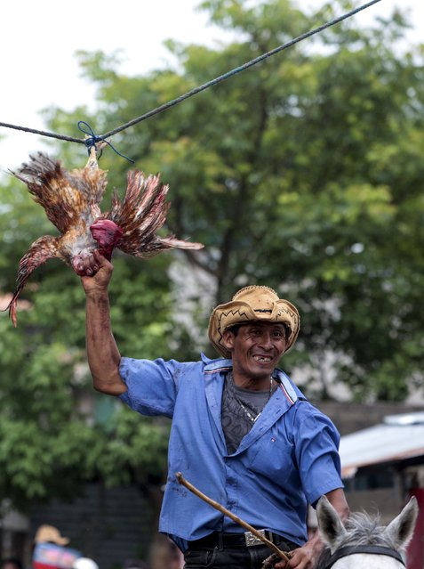 A man attempts to pull off the head of a live rooster while riding a horse during celebrations in honour of San Juan Bautista in San Juan de Oriente town, Nicaragua, June 26, 2015. (Photo by Oswaldo Rivas/Reuters)