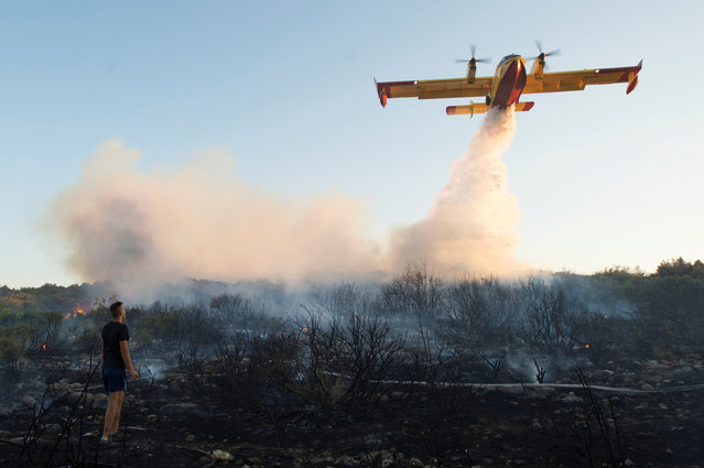 A firefighting plane drops water to extinguish a forest fire near Zadar, Croatia July 16, 2017. Croatian firefighters are battling to control a forest fire along the Adriatic coast that has damaged and destroyed buildings in villages around the city of Split, reaching the Split suburbs late this evening. Some parts of the city were without water or electricity. Prime Minister Andrej Plenkovic said that if necessar yCroatia might consider asking for help from its European Union partners. (Photo by Edin Tuzlak/Reuters)