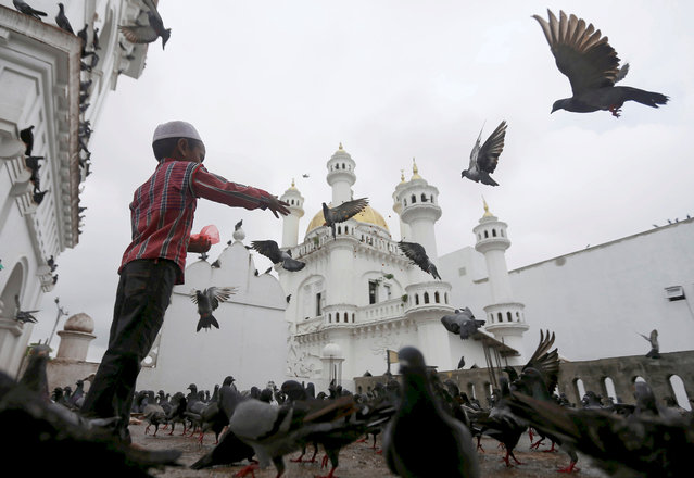 A Muslim boy feeds pigeons after Friday prayers during the holy month of Ramadan at a mosque in Colombo, Sri Lanka June 16, 2017. (Photo by Dinuka Liyanawatte/Reuters)