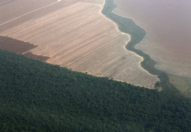 An aerial view shows the Amazon rainforest (bottom) bordered by land cleared to prepare for the planting of soybeans, in Mato Grosso, western Brazil, October 2, 2015. (Photo by Paulo Whitaker/Reuters)
