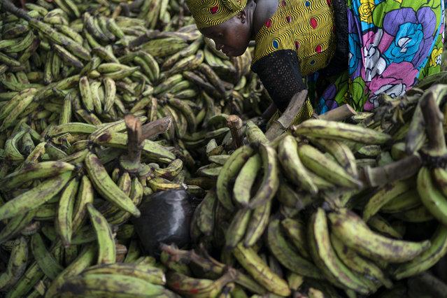 A woman separates bananas to sale at a local market in Abobo neighborhood, in the suburbs of Abidjan, Ivory Coast, Sunday, November 1, 2020. (Photo by Leo Correa/AP Photo)