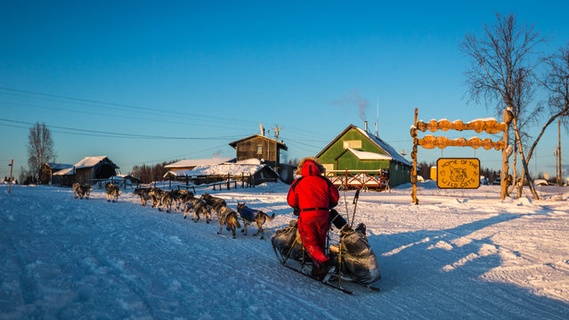 Nathan Schroeder mushes into Kaltag, Alaska, during the Iditarod Trail Sled Dog Race, Sunday, March 15, 2015. (Photo by Loren Holmes/AP Photo/Alaska Dispatch News)